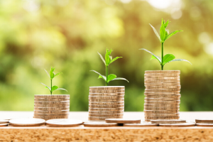 savings and seedlings - for web.png North Devon community group and parish council grant schemes open for applications